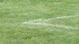 Cup-Spiel beim FC Lustenau